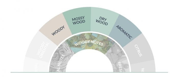 Woody Fragrance